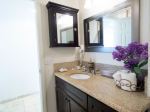 Bathroom #2 Penthouse